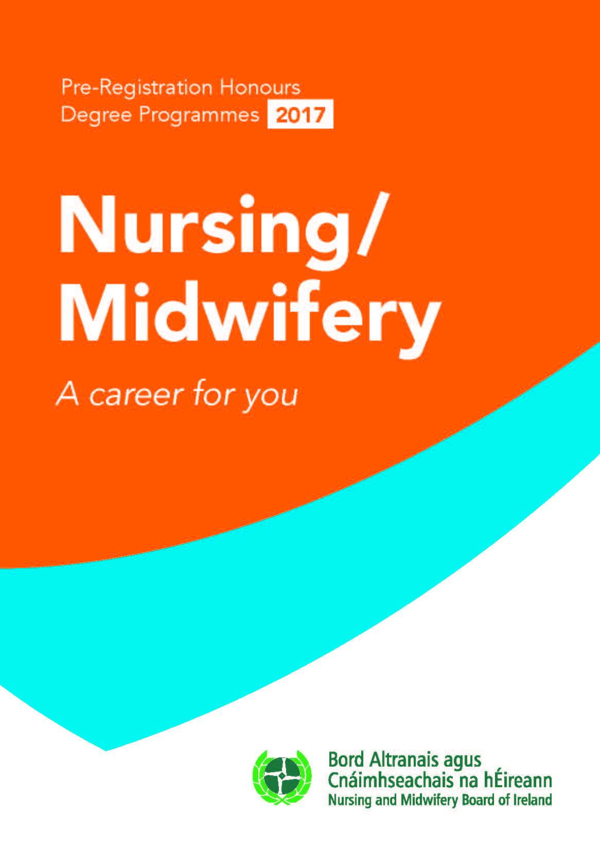 careers in nursing midwifery nursing and midwifery board nursing and midwifery careers booklet