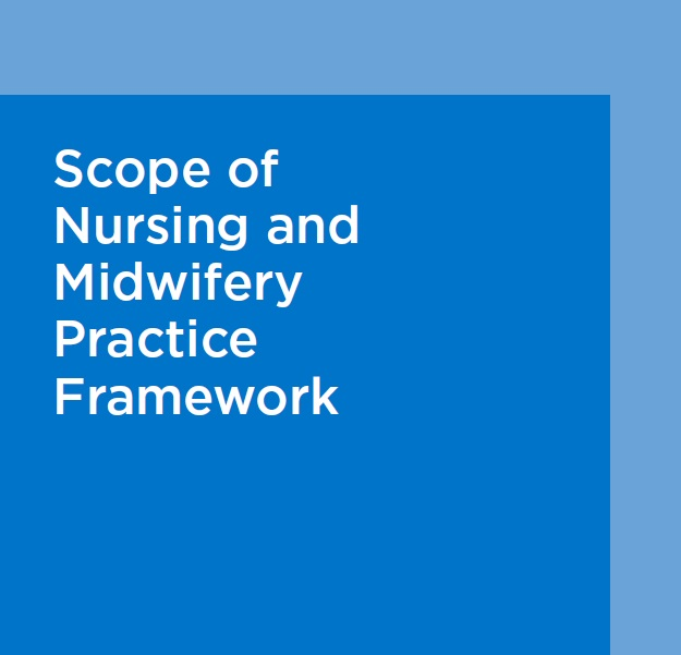 NMBI - NMBI Scope of Practice: Responsibility